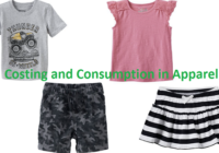 Costing and Consumption in Apparel